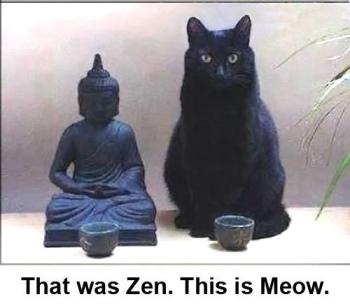 Zen Meow